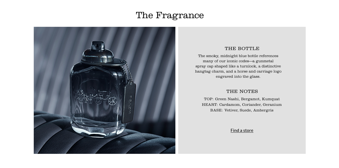 Men Fragrance