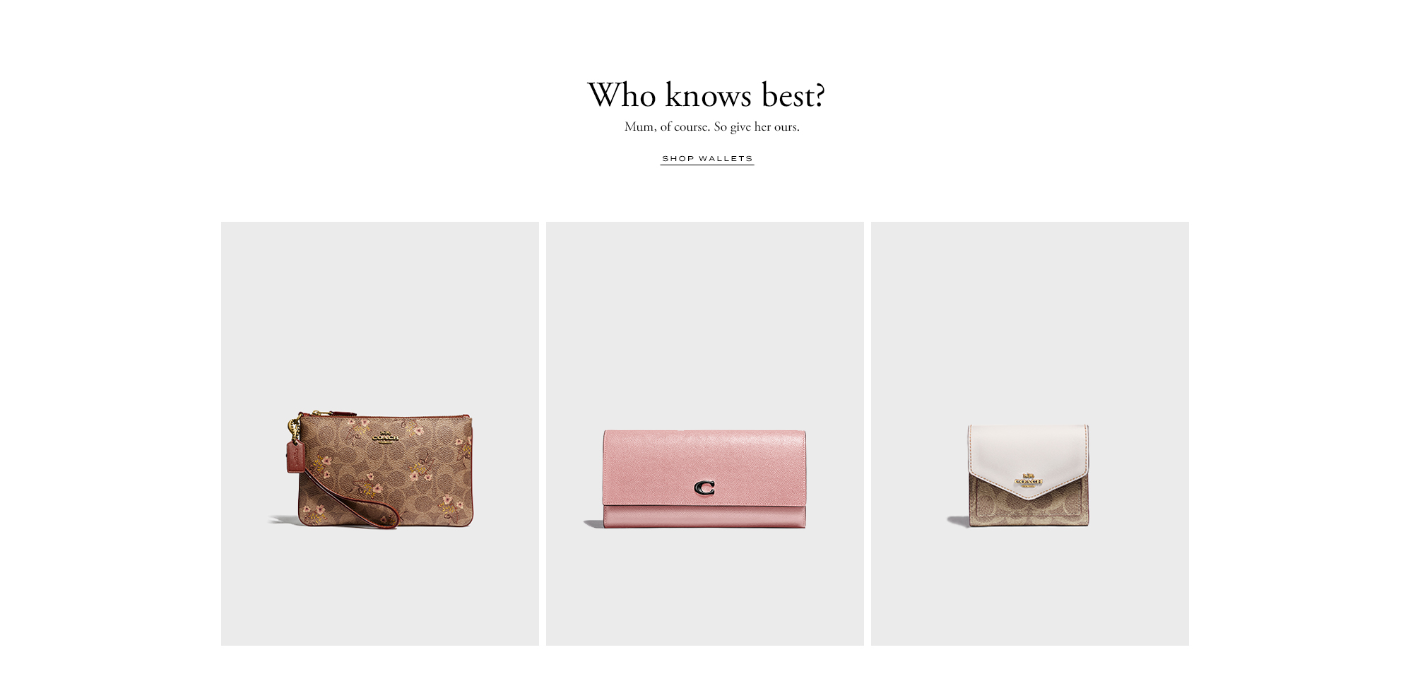 94e2c2a2074a Designer Fashion   Handbags