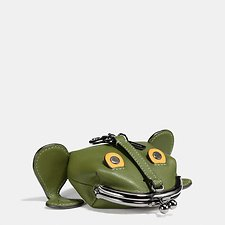 Picture of FROGGY COIN CASE