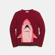 Picture of SHARKY INTARSIA SWEATER