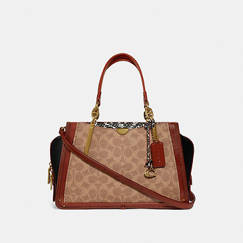 Image of Coach Australia  DREAMER IN SIGNATURE CANVAS WITH SNAKESKIN DETAIL