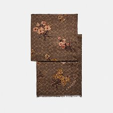 Image of Coach Australia  SIGNATURE PAINTED FLORAL BOW PRINT OBLONG SCARF