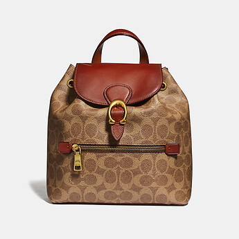 Image of Coach Australia  EVIE BACKPACK 22 IN SIGNATURE CANVAS